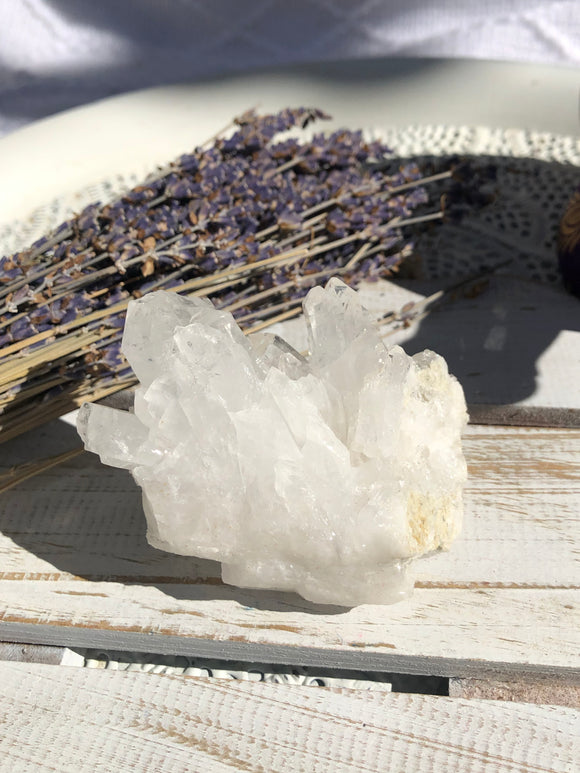 Clear Quartz Cluster #5 | Crystal Karma by Trina