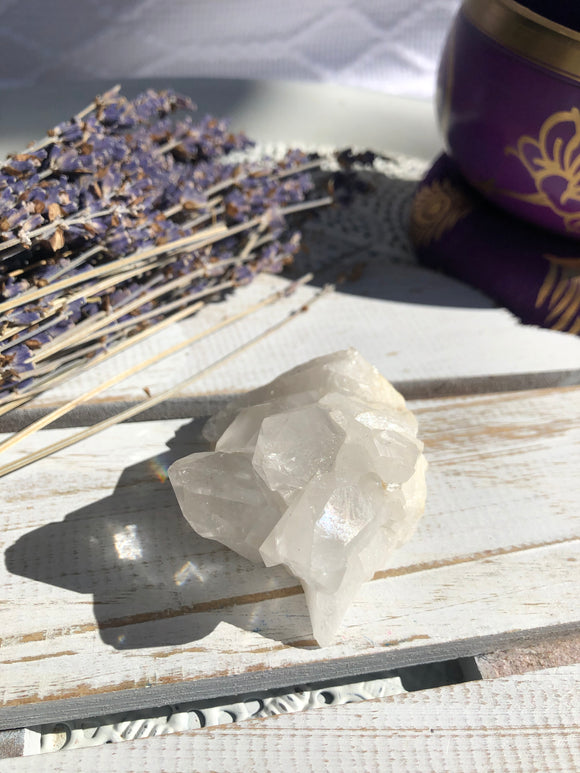 Clear Quartz Cluster #7 | Crystal Karma by Trina