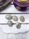 Dalmation Jasper Worry Stones  | Crystal Karma by Trina