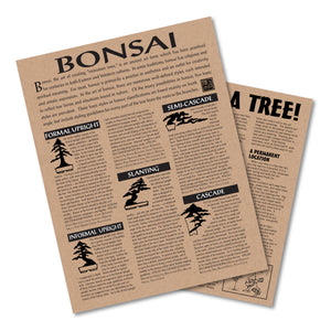 Bonsai Tree | Instructions | The Jonsteen Company