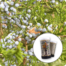 Load image into Gallery viewer, Eastern Redcedar | Mini-Grow Kit | The Jonsteen Company