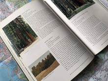 Load image into Gallery viewer, A Guide to the Sequoia Groves of California | Dwight Willard | The Jonsteen Company