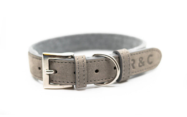 Ralph & Co Dalton Collar