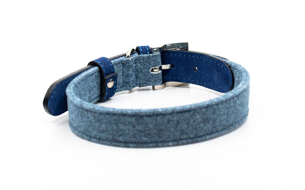 Ralph Fabric/Leather Collar - Rayleigh
