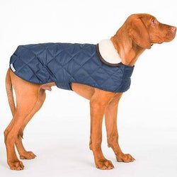 Mutts & Hounds Quilted Waterproof Coat- Navy