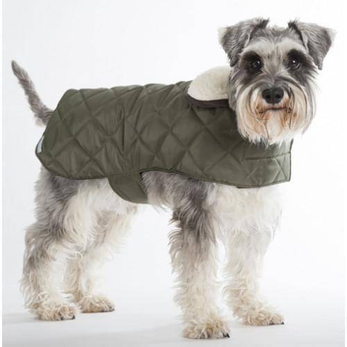 Mutts & Hounds Quilted Waterproof Coat - Olive