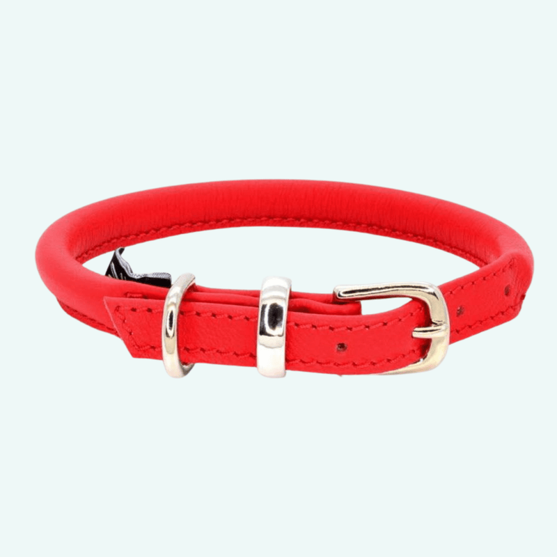 Dogs and Horses Rolled Leather Collar - Red