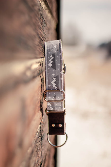 Beaverhead Pet Collar