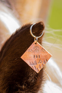 Firelight dog tag