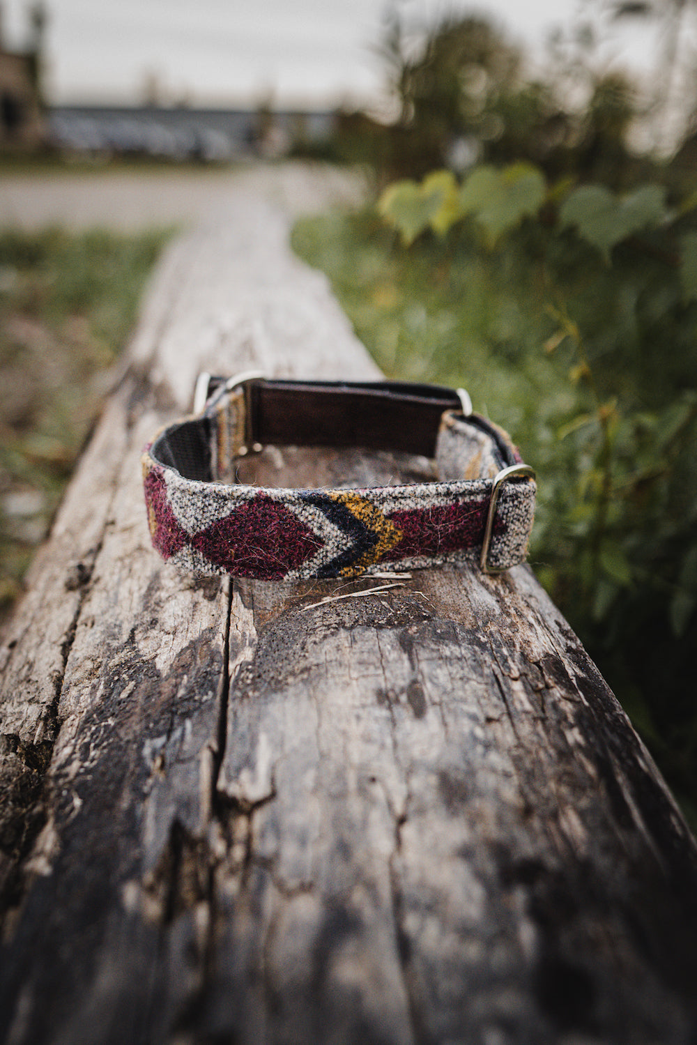 Hazan Pet Collar