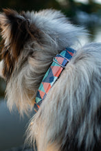 Load image into Gallery viewer, Opal Pet Collar