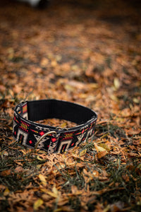 Marquette Pet Collar