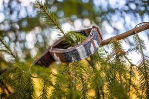 Pine Ridge Pet Collar