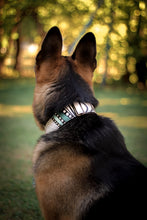 Load image into Gallery viewer, Rorschach Pet Collar
