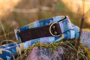 Tyndall Pet Collar