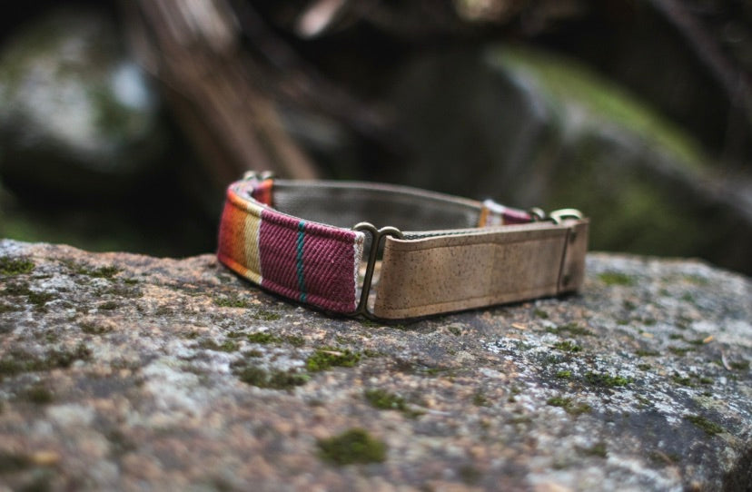 Sedona Sunset Martingale Pet Collar