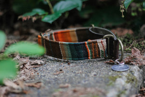 Sinharaja Pet Collar