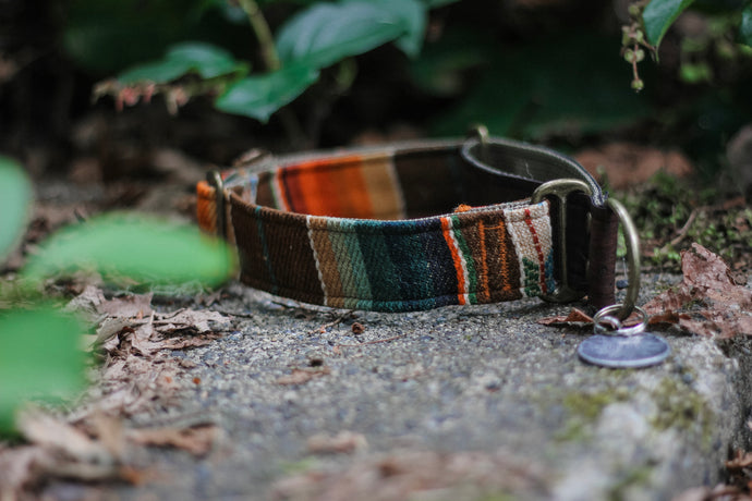 Sinharaja Martingale Pet Collar
