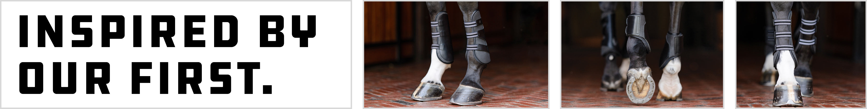 Essential: The Original Front & Hind Boots
