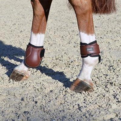 Young Horse Hind Boot
