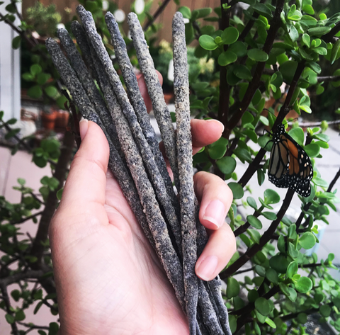 Copal Incense PACKS OF 10