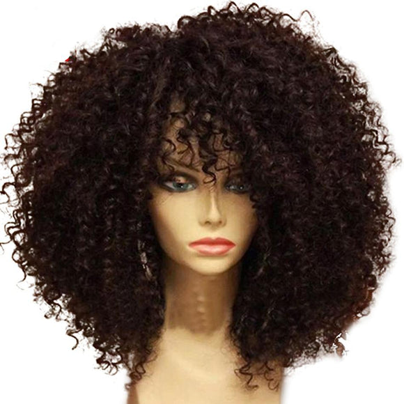 Afro Kinky Curly Lace Front  Wigs