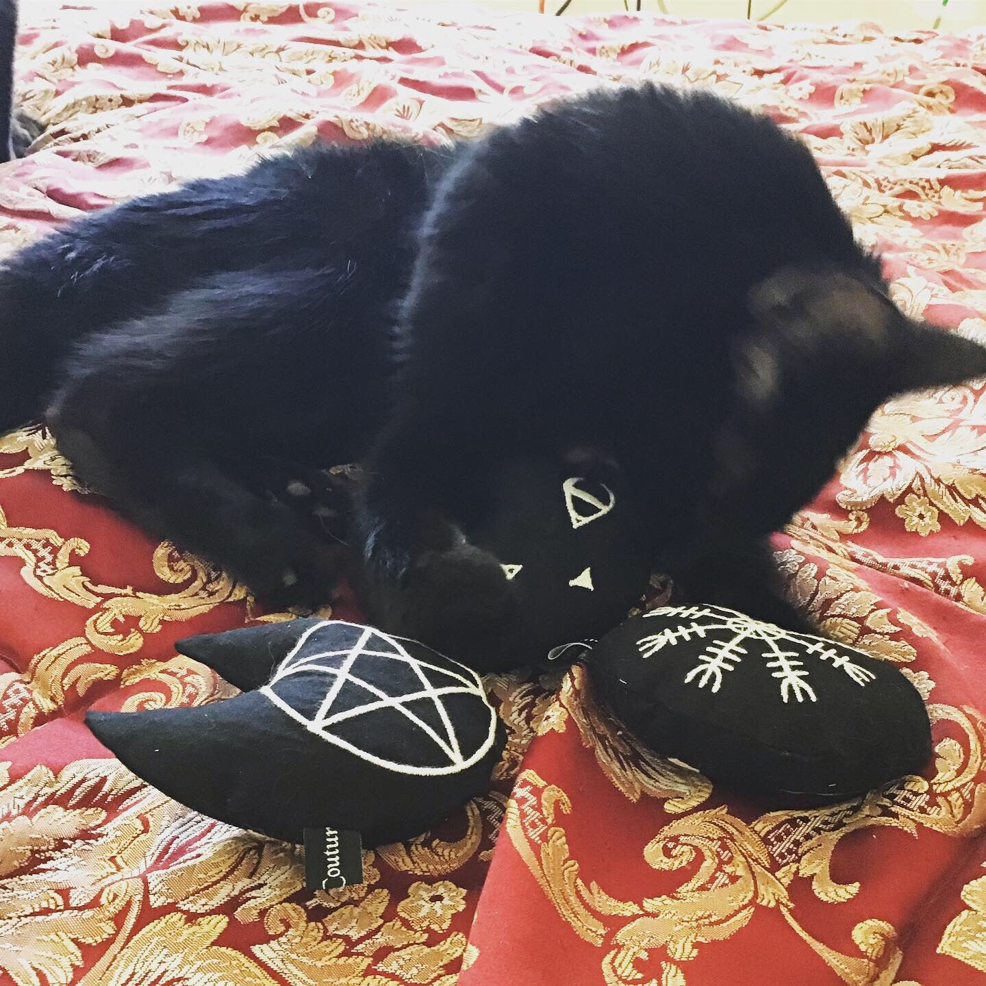 Cat Poppet with pentagram