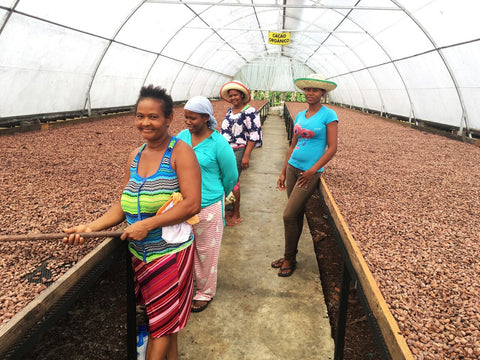 Women working drying beds at OKO Caribe
