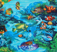 Tropical Fish Coral Reef