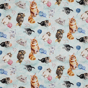 Kittens Kitty cats scattered on blue