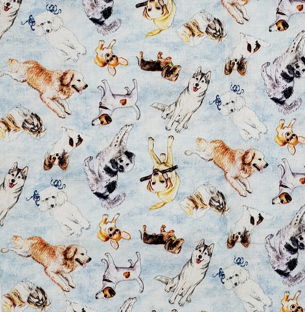 Dogs puppies scattered on blue
