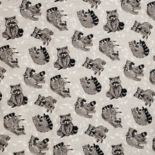Raccoons on grey
