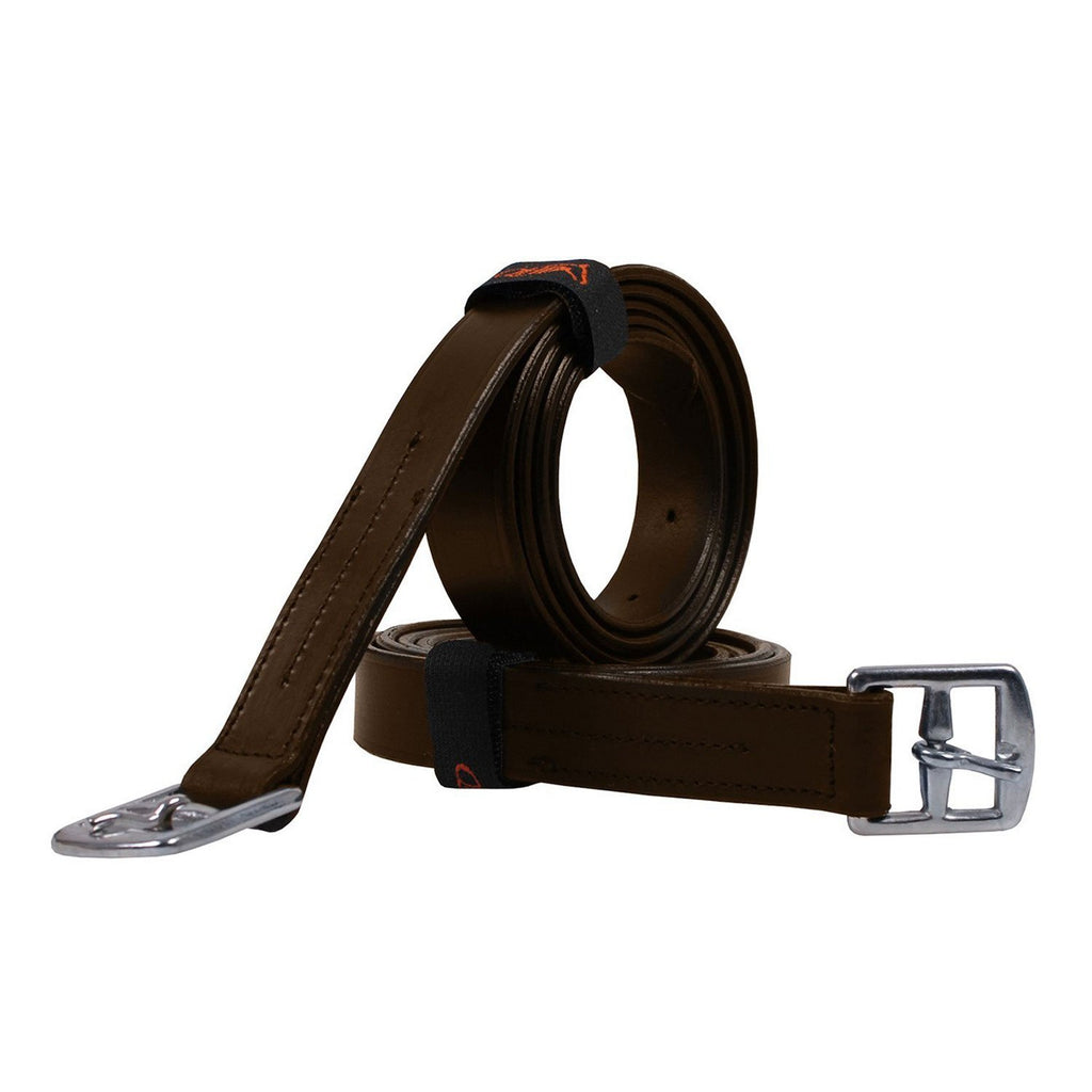 QHP Basic Stirrup Leathers - EveryDay Equestrian