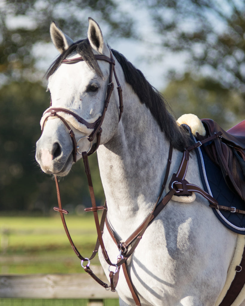 QHP Ontario Breastplate
