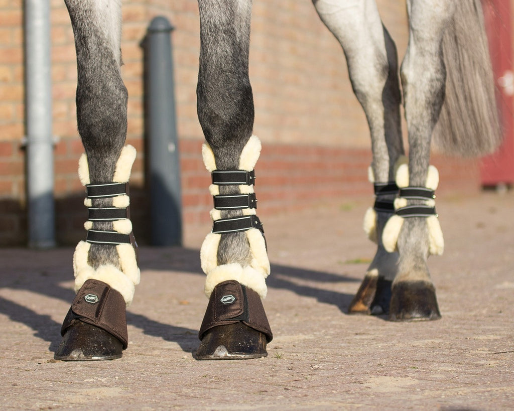 QHP Ontario Bell Boots - EveryDay Equestrian