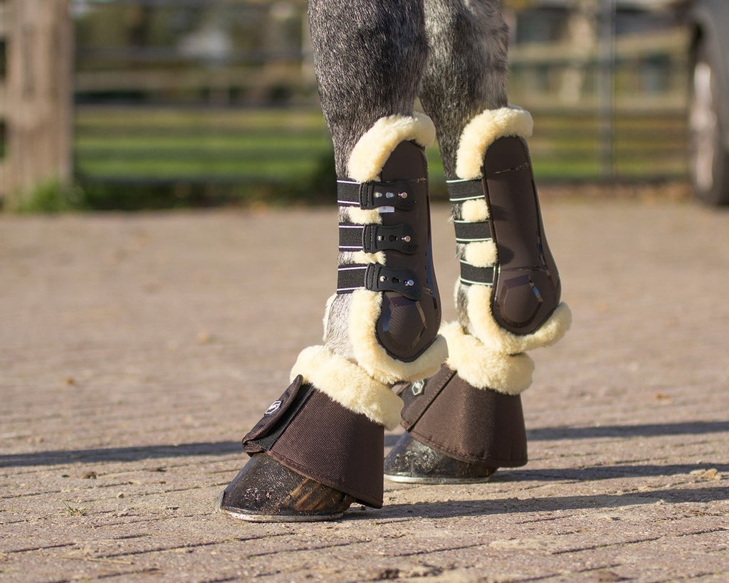 QHP Ontario Tendon Boots - EveryDay Equestrian