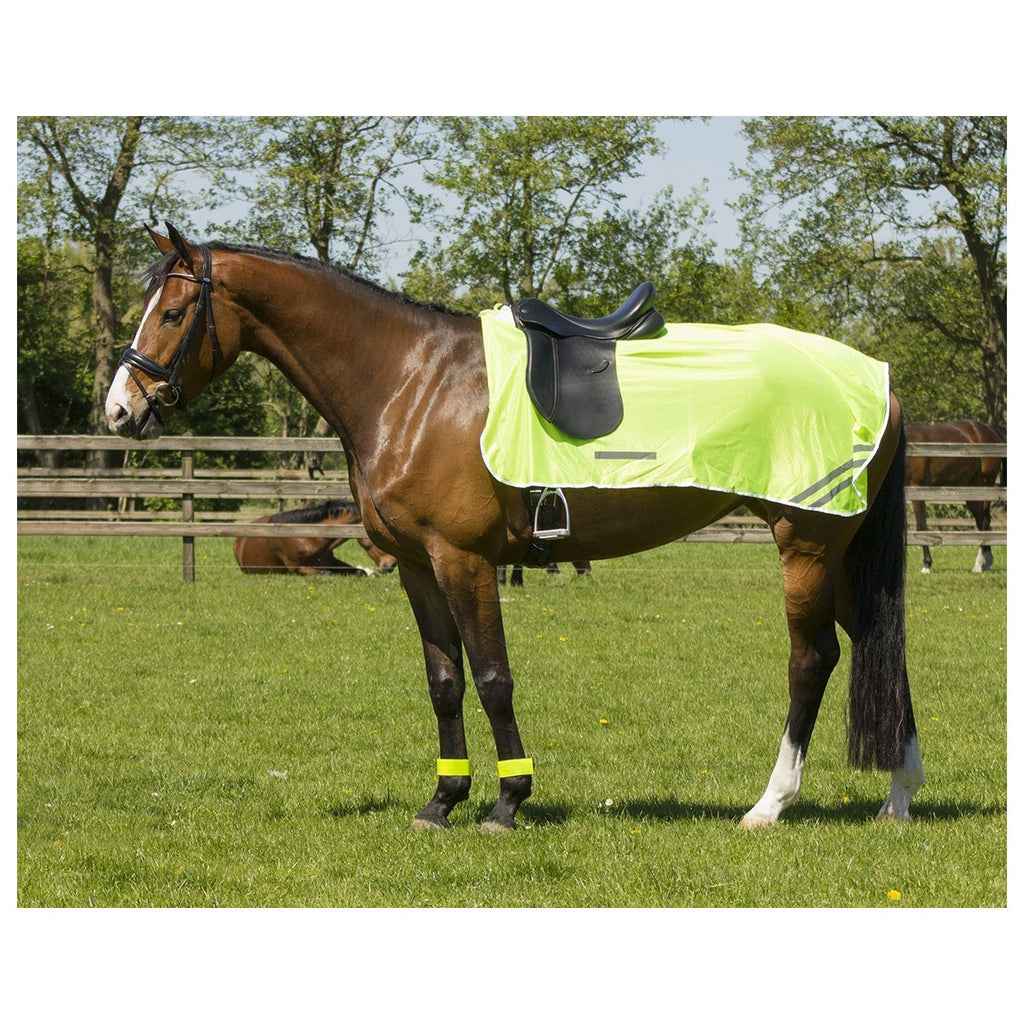 QHP Reflective Exercise Sheet - EveryDay Equestrian