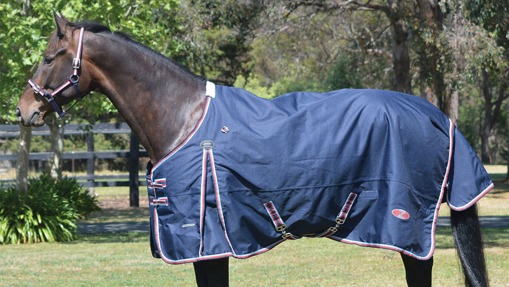 Zilco Defender Heavy Winter Rug - EveryDay Equestrian