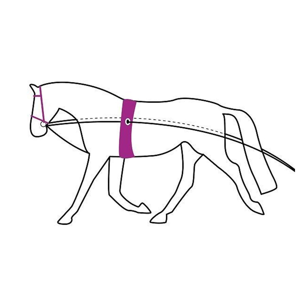 QHP Double Lunging Rein - EveryDay Equestrian