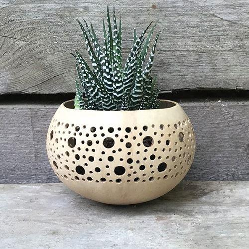 Large Dots Cream Coconut Bowl