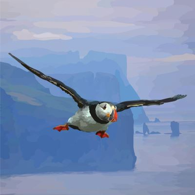 Puffin and Cliffs Card