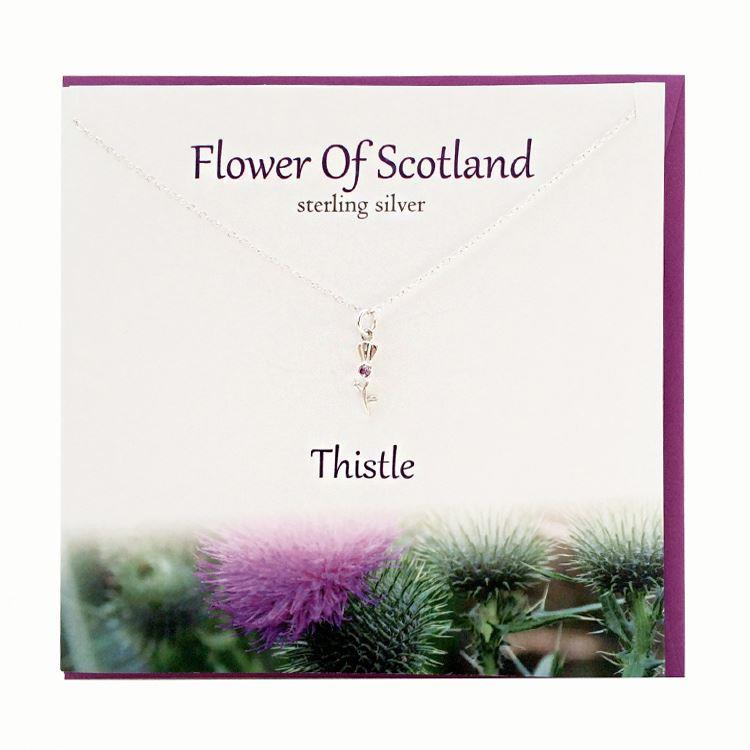 Silver Flower of Scotland Thistle Pendant Necklace