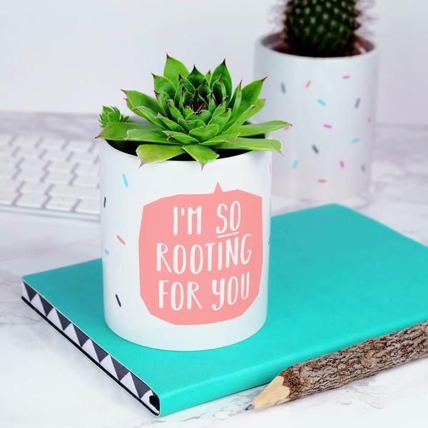 'Rooting for you' Cactus Plant Pot