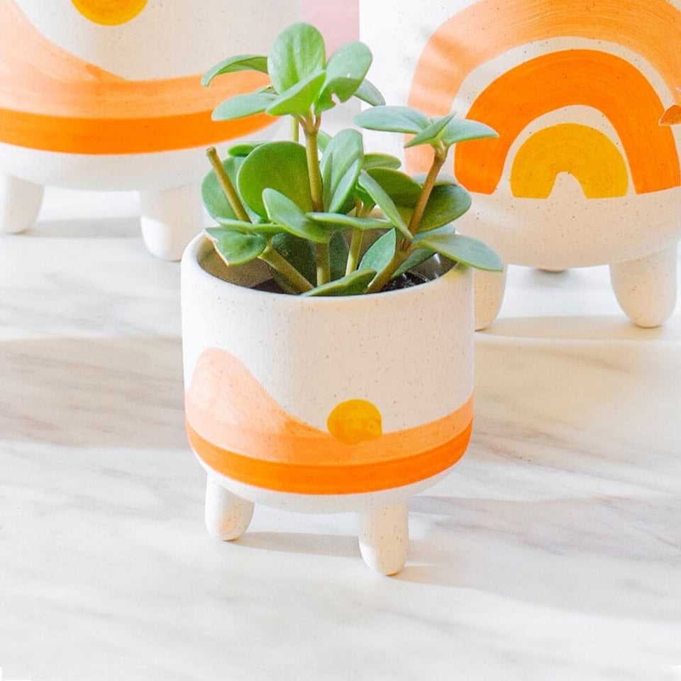 Sunset Planter on Legs