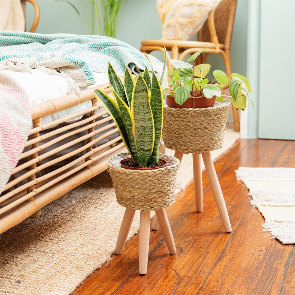 Small Basket Planter on Legs