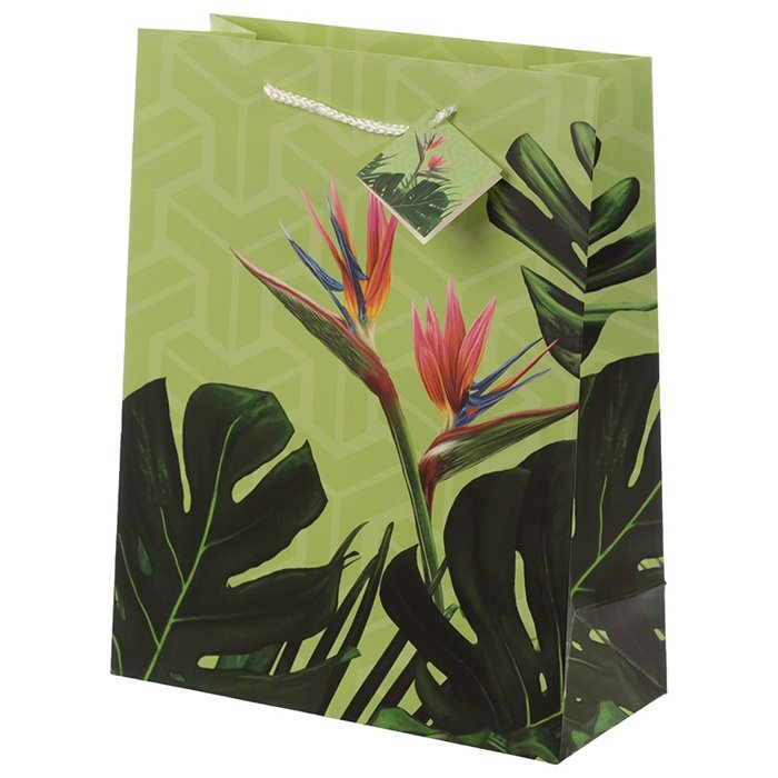 Tropical Paradise Cheese Plant Large Gift Bag