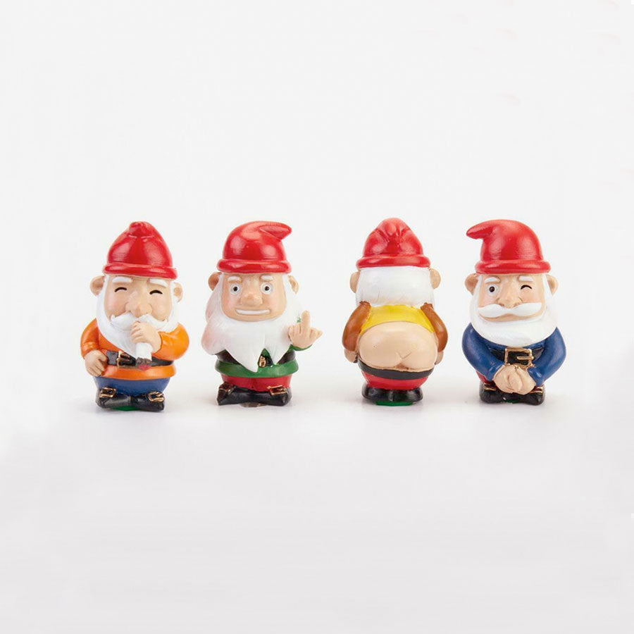 Naughty Gnomes Planter Decorations Set