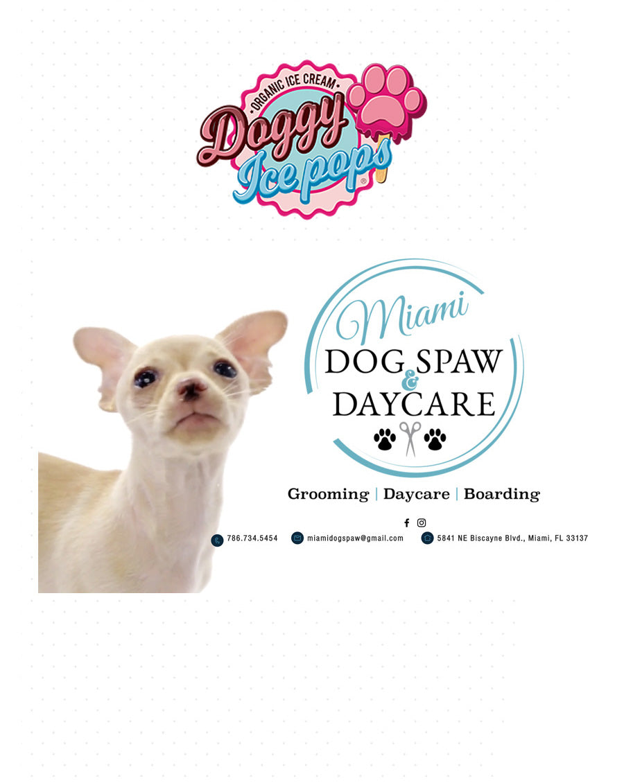 FIND VENDOR NEW – Doggy Ice Pops