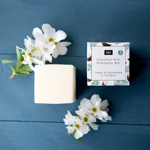 Coconut Milk Shampoo Bar Bain & Savon