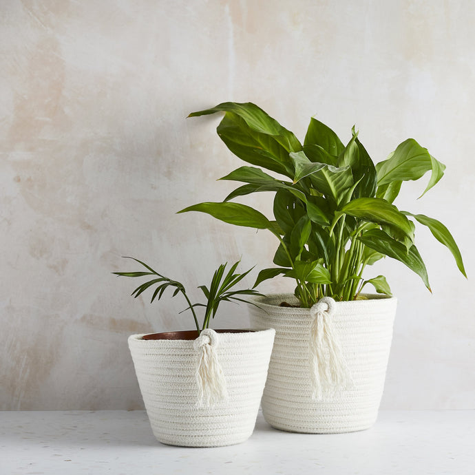 Tabitha Eve Cotton Eco Twist Plant Pot - Life Before Plastik
